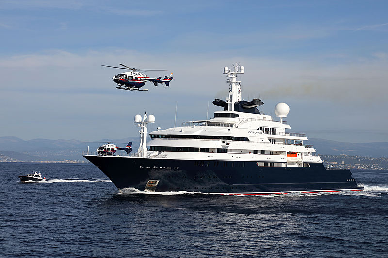 Octopus yacht cruising