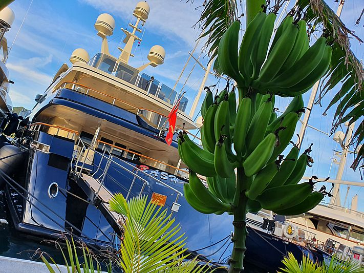 Bash yacht in marina