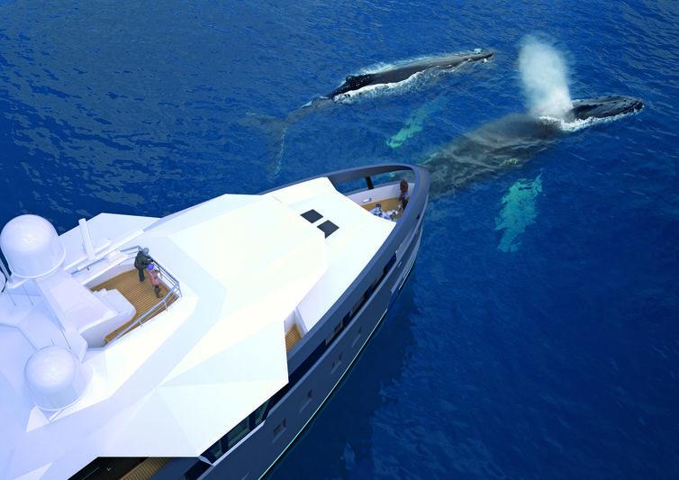 Damen SeaXplorer 55 exterior design