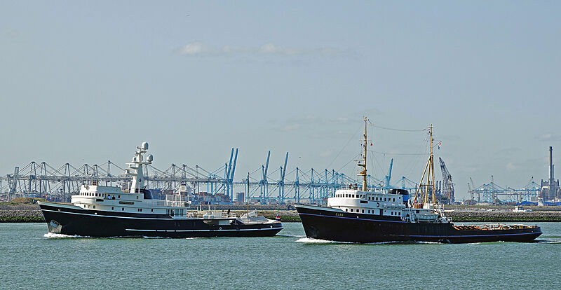 Seawolf yacht and Elbe in Hoek of Holland