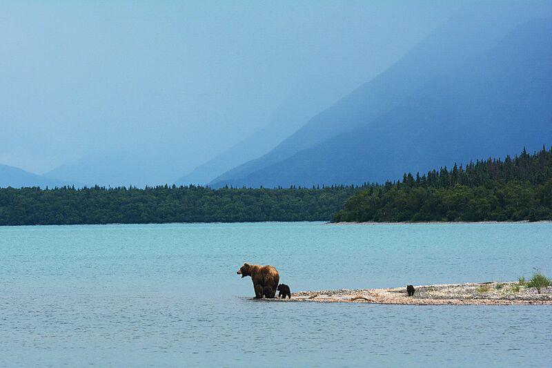 Naknek Lake, Katmai National Park, Alaska