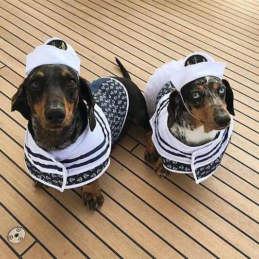 Always Believe yacht lifestyle