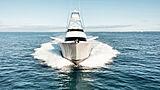 Humdinger  Yacht Viking Yachts
