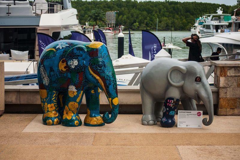 Elephants at Phuket Rendezvous 2018