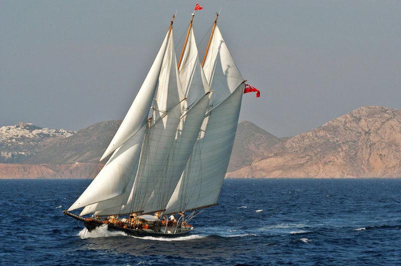 Shenandoah under sail