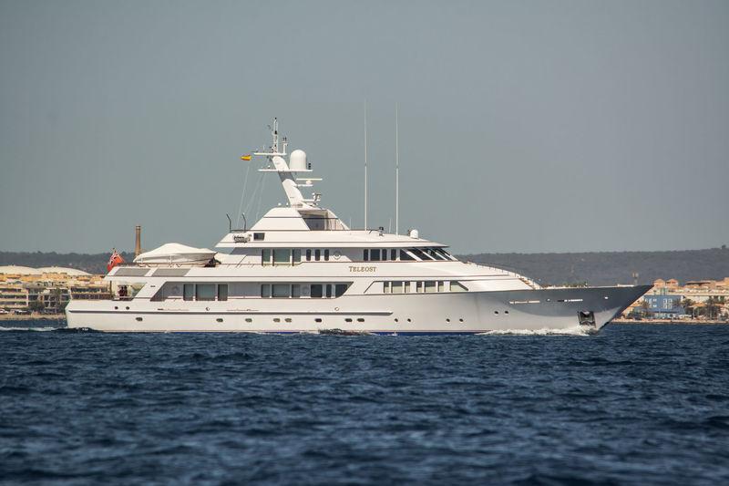 Teleost cruising off Palma de Mallorca