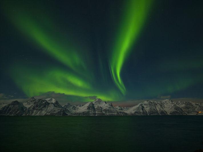 Northern lights from Firebird