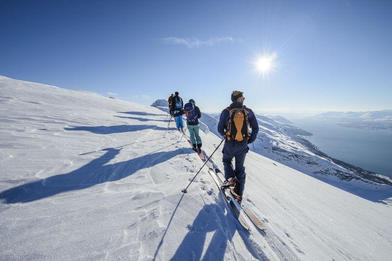 Skiing on Firebird charter experience