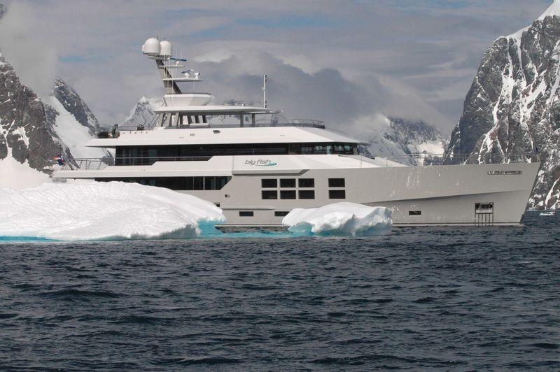 Big Fish in Antarctica