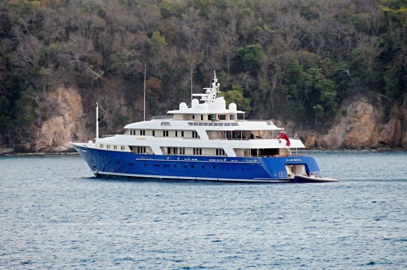 Laurel in the Caribbean