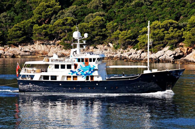 Dardanella cruising