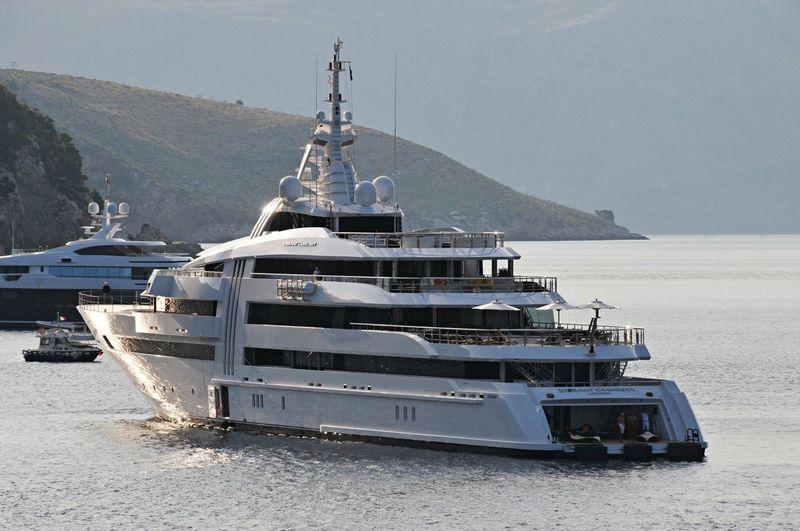 Vibrant Curiosity in the Mediterranean