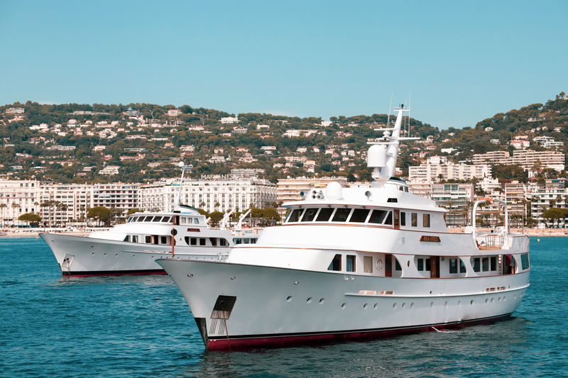 Seagull and Secret Life in Cannes