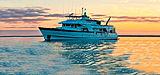 Beluga anchored