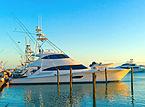 Bella Donna Di Yacht Viking Yachts