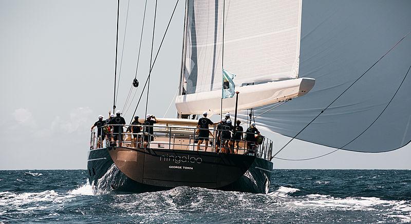 Niingaloo sailing yacht in St Barths