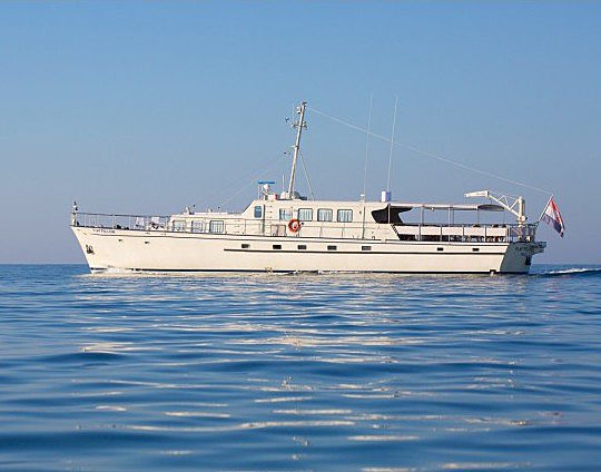 Play Fellow yacht profile
