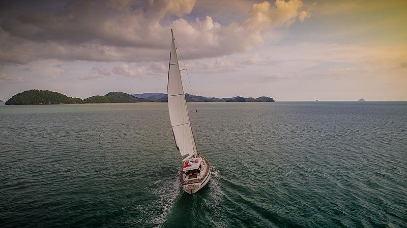 Taronga yacht sailing